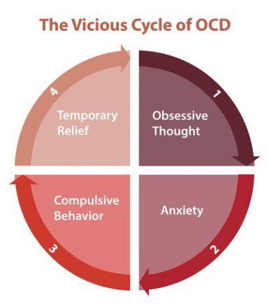 ocd-cycle-400